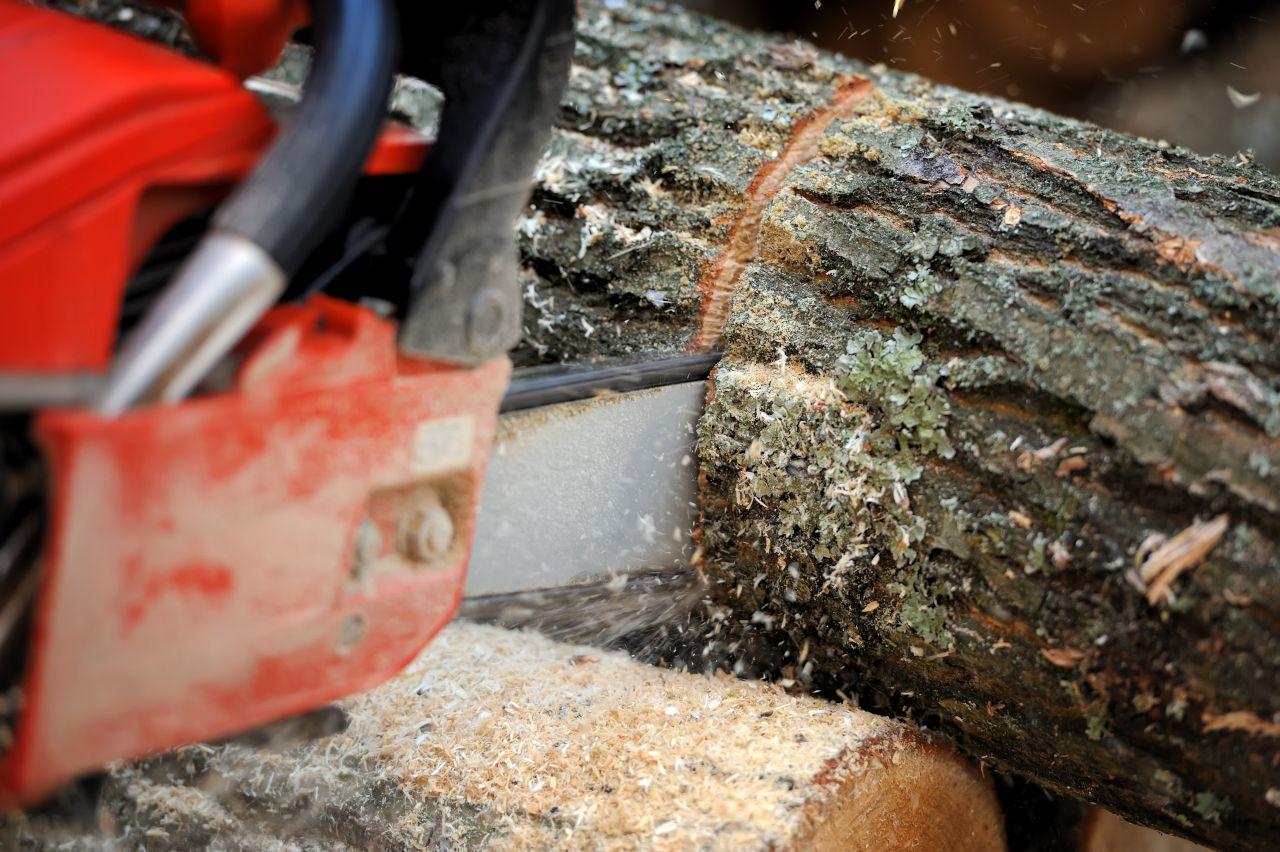 Sägekette schneidet Baumstamm